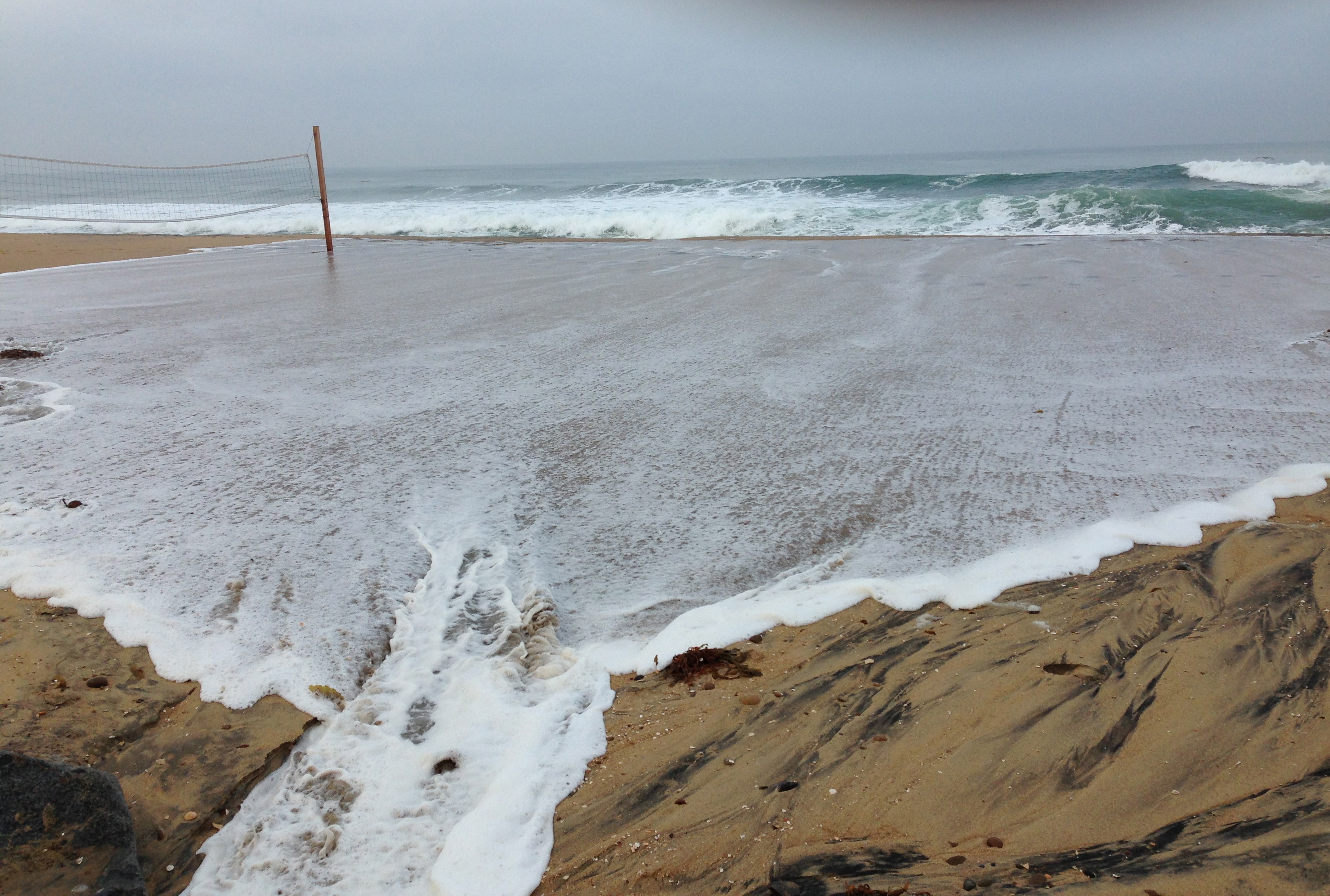 Coastal Flooding in Imperial Beach – The WILDCOAST Blog