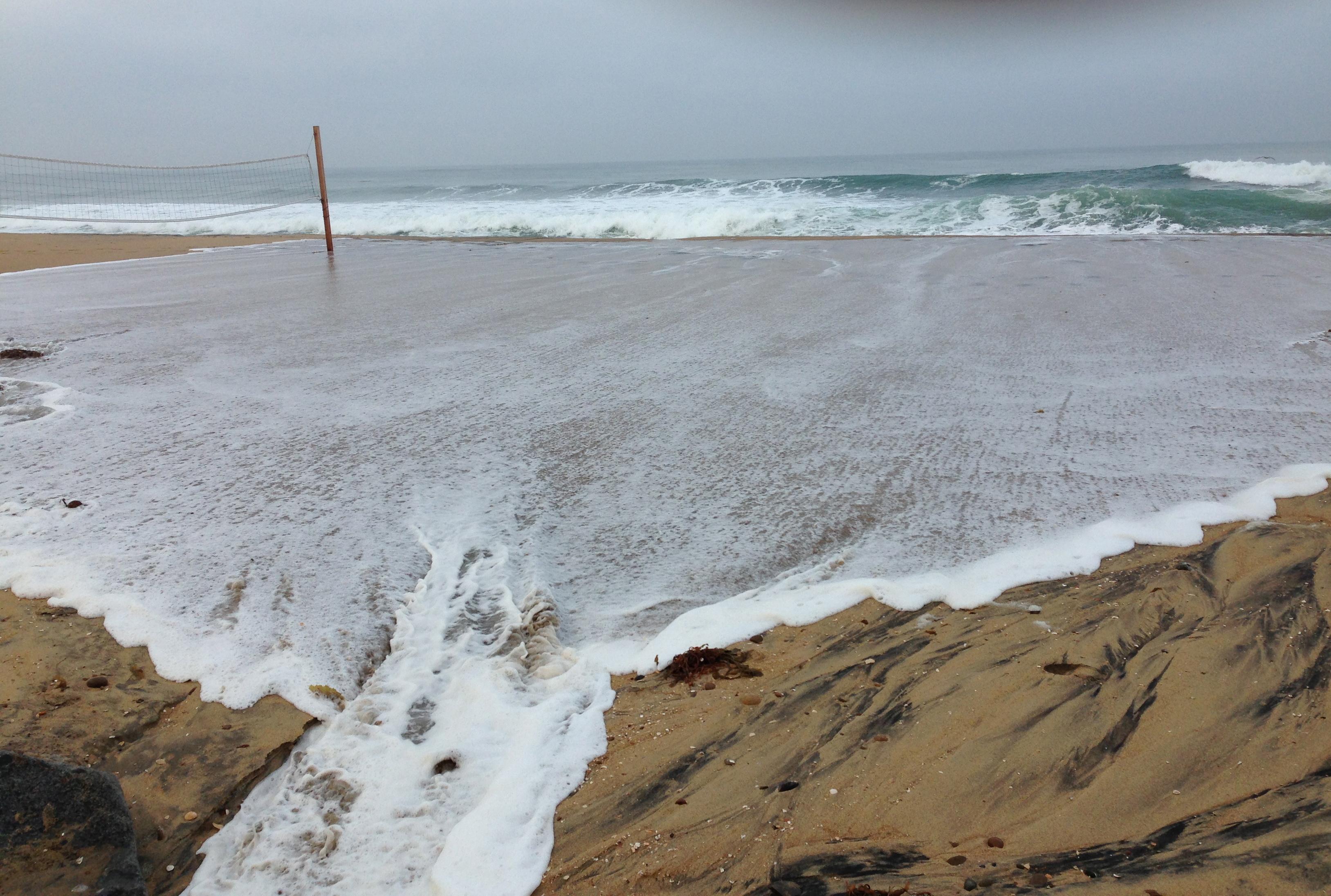 Coastal Flooding in Imperial Beach – The WILDCOAST Blog