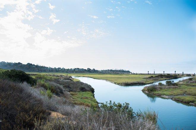 san elijo lagoon SMCA_5