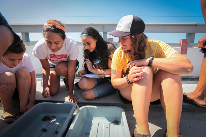 Ourdoor Outreach students learn about tide pools, tagging and estimating sealife populations at Scripps Institiute of Oceanography.