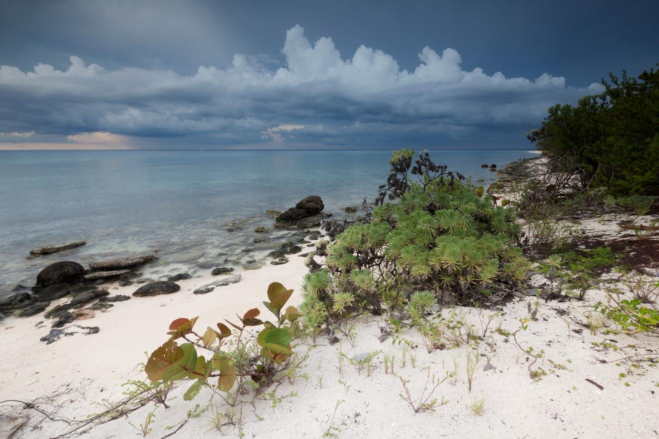 Coastline, Guanahacabibes Peninsula National Park, Pinar del Rio Province, western Cuba, September
